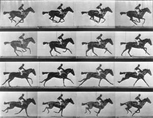 Eadweard-Muybridge-horse-galloping