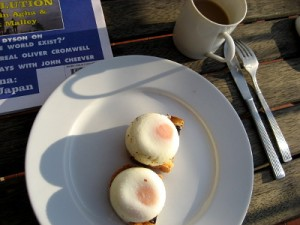 poached eggs nov 2012