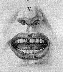 human_body face