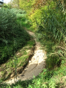 path 02